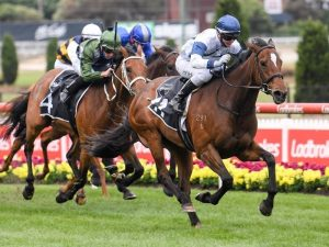 How to Find a Reliable Horse Racing tip